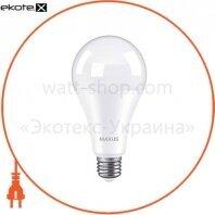 Лампа світлодіодна MAXUS 1-LED-784 A80 18W 4100K 220V E27