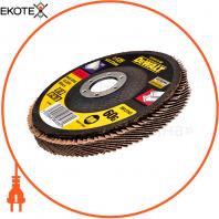 Круг шлифовальный лепестковый DeWALT DT30612