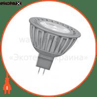 Светодиодная лампа 6.5W 35W 12V GU5.3 LED STAR MR16 OSRAM дневной белый 36гр