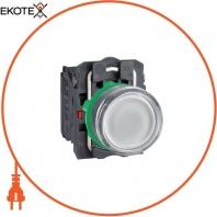 XB5AW31M5 кнопки с подсветкой