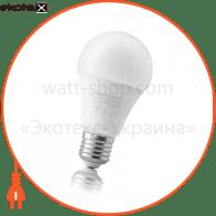Лампа світлодіодна ЄВРОСВІТЛО A-12-3000-27
