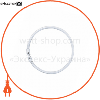 Люминесцентная лампа кольцевая FC 22W/840 2GX13 OSRAM