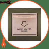 Энергосавер (карточного типа с логотипом) 701-3130-119 Цвет Проходная Задержка